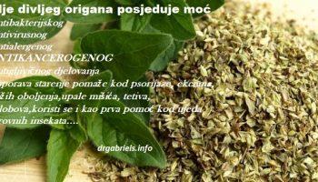 ulje divljeg origana lijek iz prirode , uništava ćelije aka